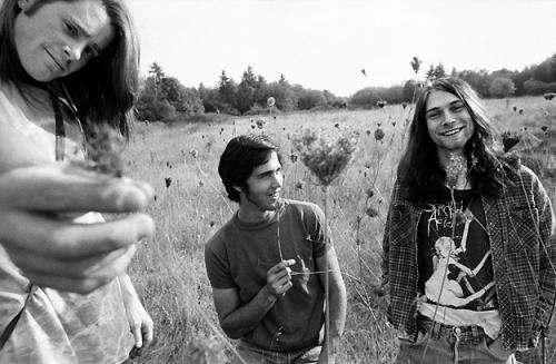 Nirvana Band