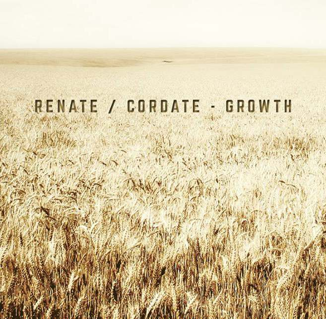 Renate Cordate - Growth
