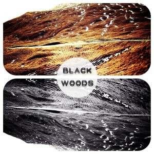 Black-Woods-The-Strange-Crow
