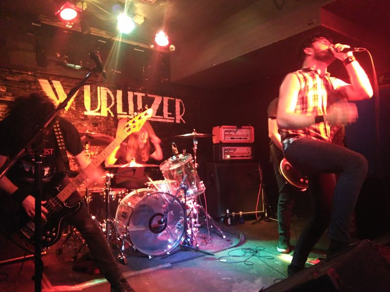 Cobra Live Band