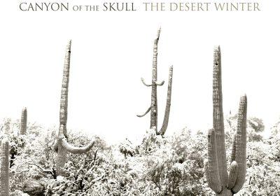 canyon-of-the-skull-the-desert-winter