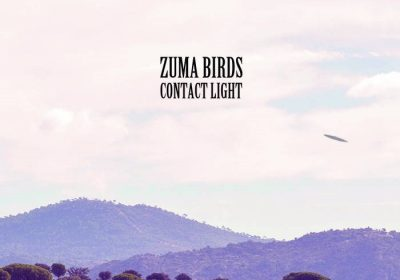 zuma-birds-contact-light
