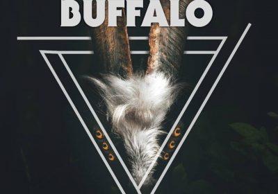 buffalo-paralisis