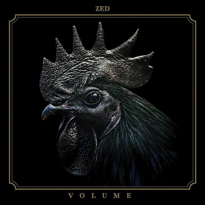 zed-volume