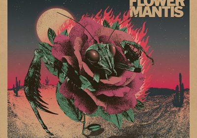 devil-flower-mantis-st