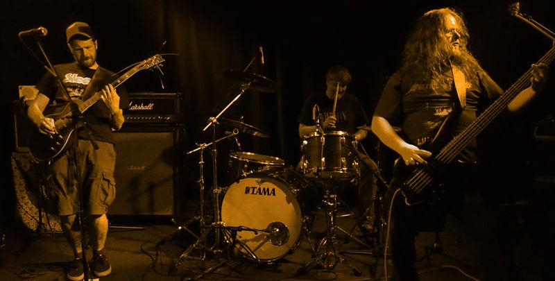 zqkmgdz-live-band