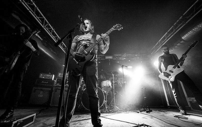 tortuga-live-band