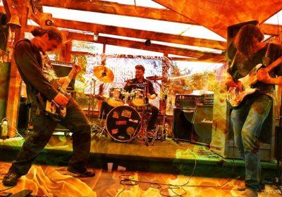 camel-driver-live-band