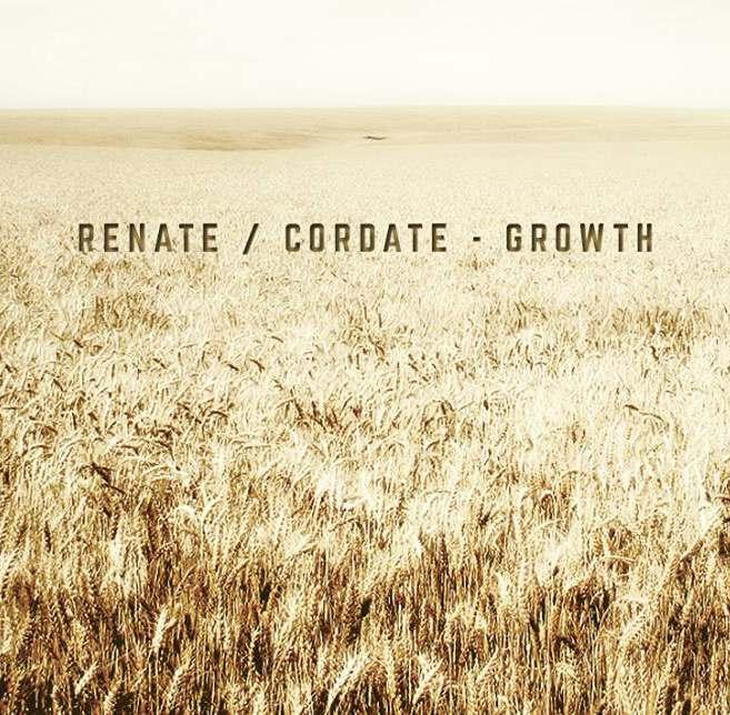 Renate Cordate - Growth