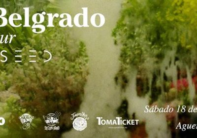cartel-viva-belgrado-noiseed-tenerife-2017