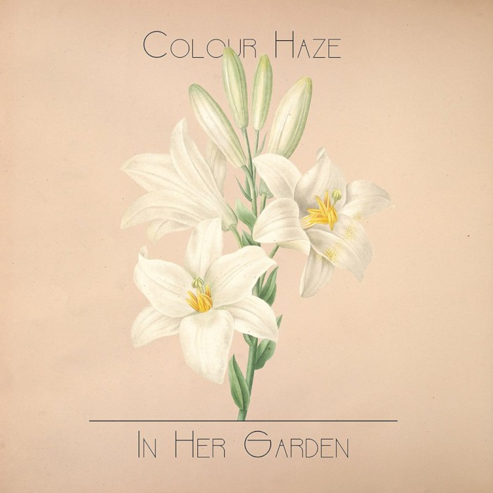 colour-haze-in-her-garden