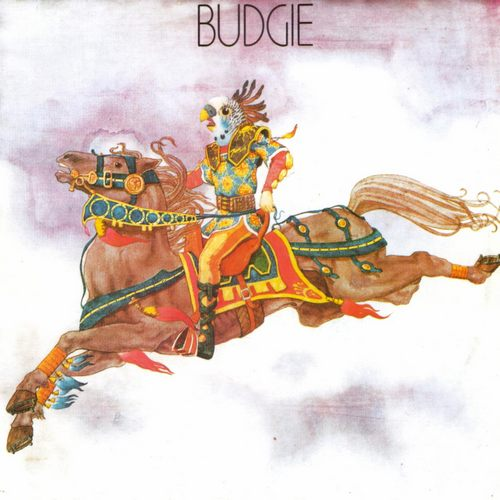 budgie-st