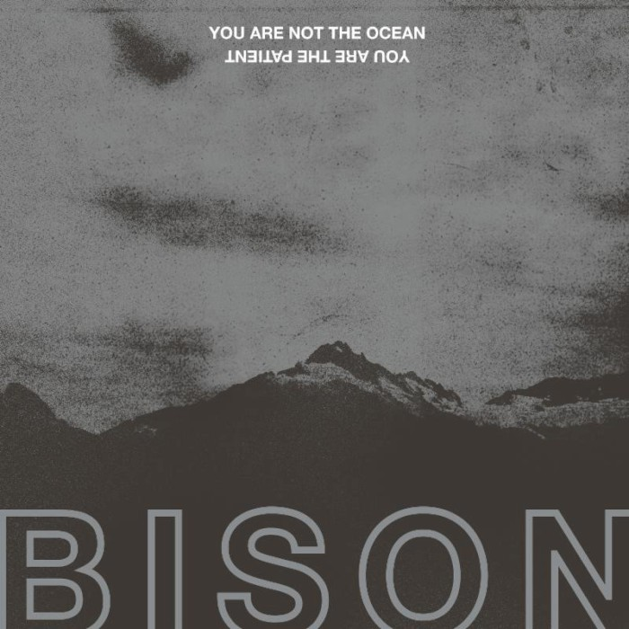 bison-your-are-not-the-ocean-you-are-the-patient