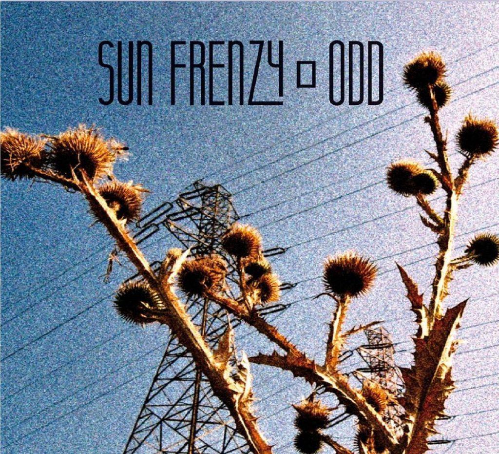sun-frenzy-odd