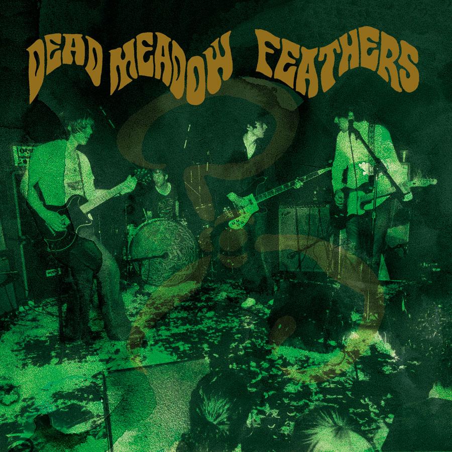 dead-meadow-feathers