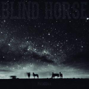 blind-horse-patagonia