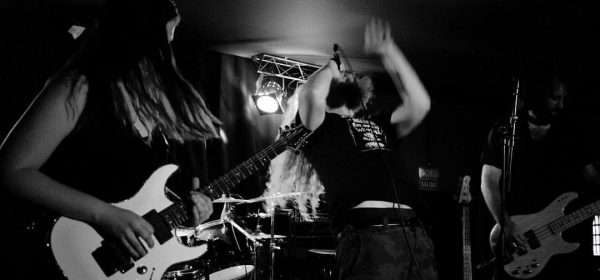 krazark-live-band