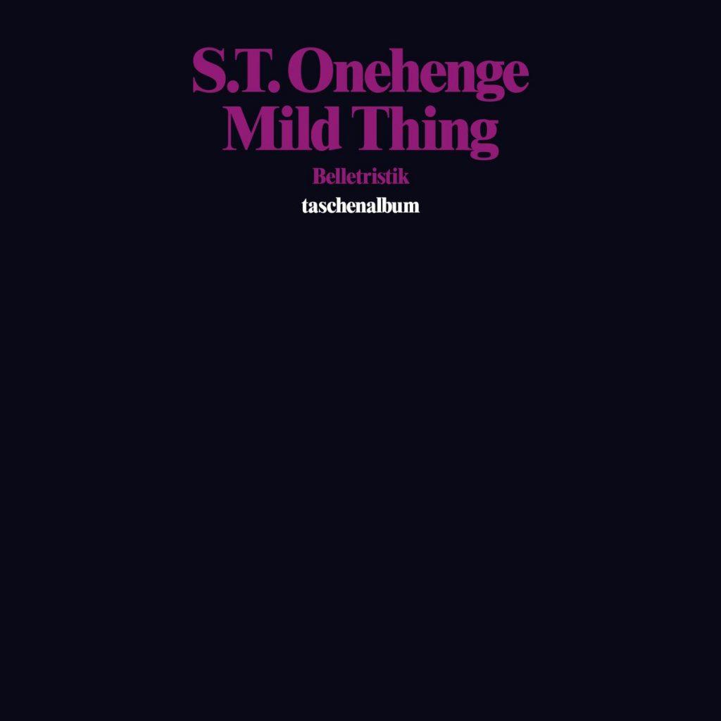 stonehenge-mild-thing