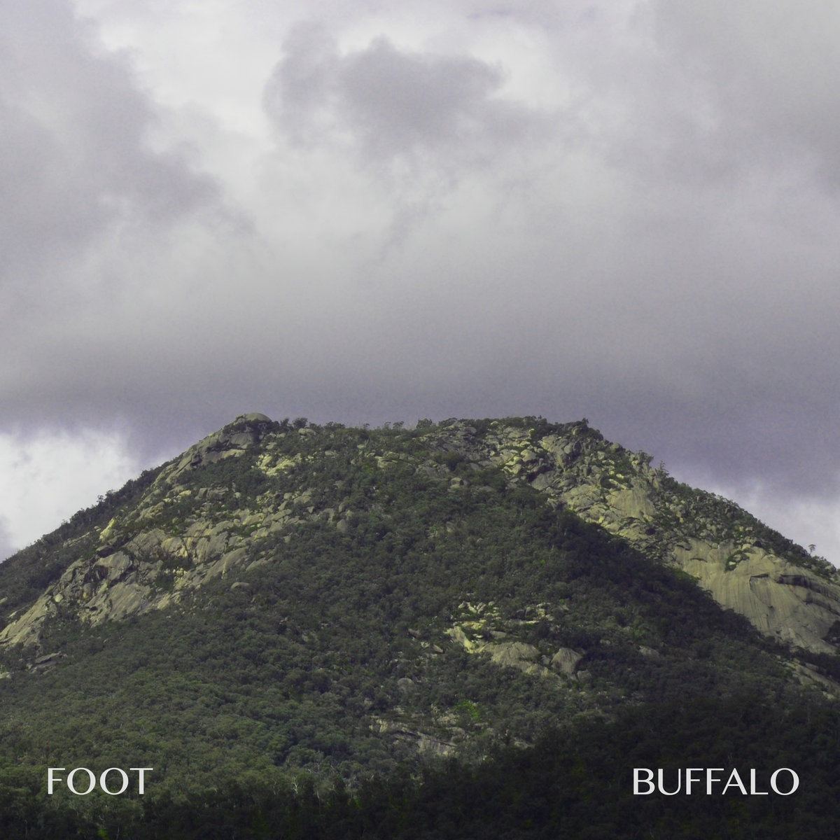 foot-buffalo