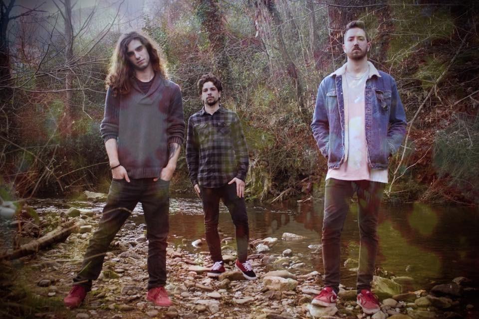 holy-mushroom-band