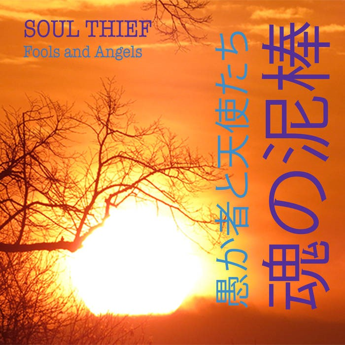 soul-thief-fools-and-angels