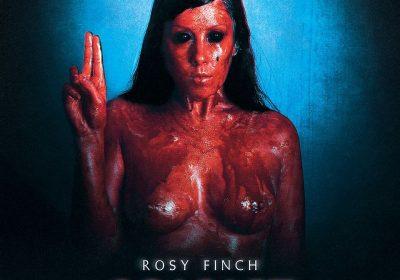 rosy-finch-scarlet